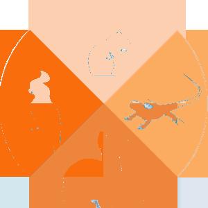 Icon-Exotics