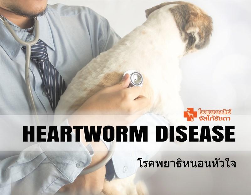 โรคพยาธิหนอนหัวใจ